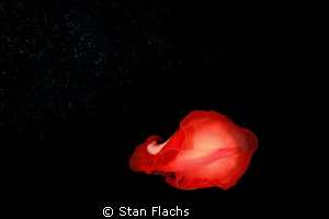 I wanna touch the stars (spanish dancer &amp; bubbles) by Stan Flachs 